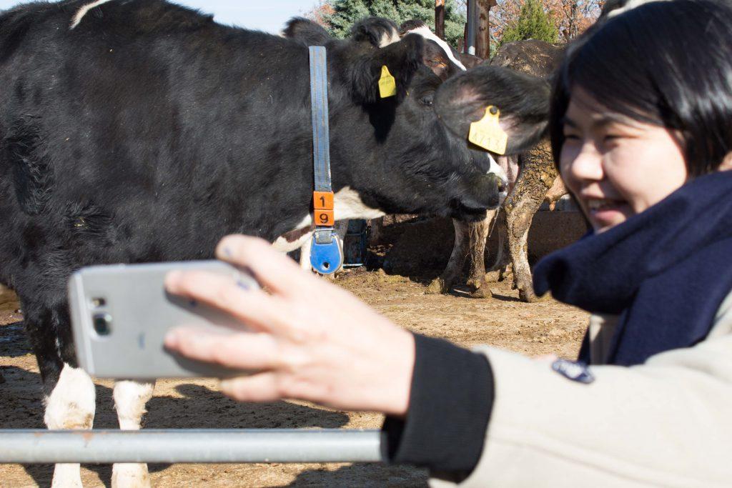 牛と自撮りするマユちゃん