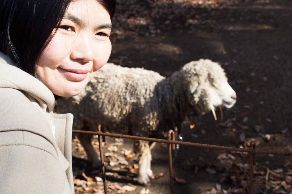 帰りに羊を見つけたマユちゃん